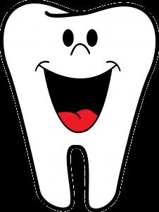 DD_dal dentista_ numerazione denti decidui denti da latte